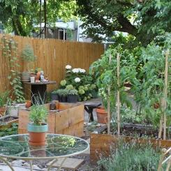 Garden 7.8.12 056