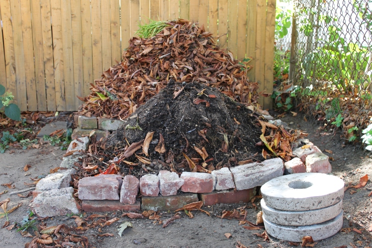 Compost heaps 1 and 2