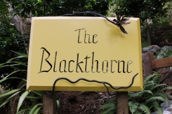 The Blackthorne