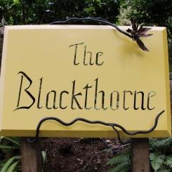 The Blackthorne